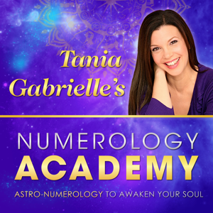 tania gabrielle's numerology academy training review