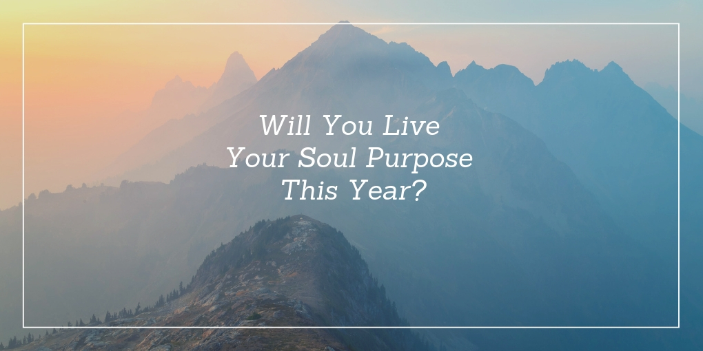 Live Your Soul Purpose