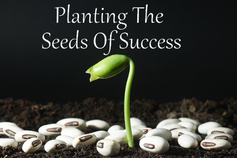 planting seeds of success